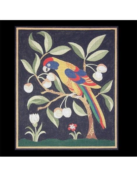 Perroquet gourmand